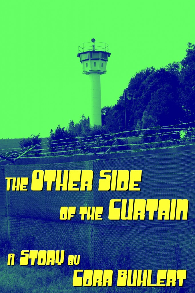 Cover: The Other Side of the Curtain
