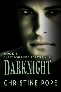 Darknight by Christine Pope