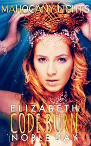 Code Burn by Elizabeth Noble Day