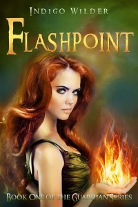 Flashpoint by Indigo Wilder