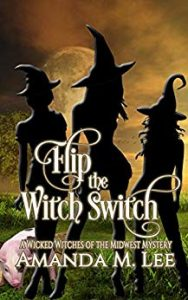 Flip the Witch Switch by Amanda M. Lee