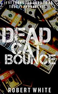 Dead Cat Bounce by Robert White