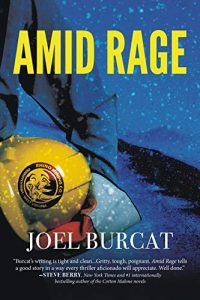 Amid Rage by Joel Burcat